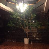 home_gallery03