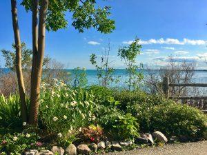 Wisconsin's summer shore of Lake Michigan