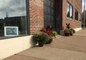 Genesee Street flowers
